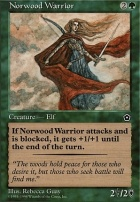 Portal II: Norwood Warrior