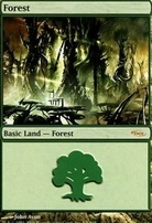 Promotional: Forest (Arena 2004)