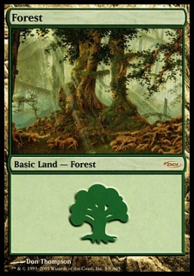Promotional: Forest (Arena 2005)