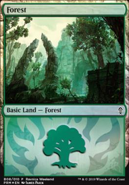 Promotional: Forest (Ravnica Weekend - B08 Foil)