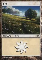 Promotional: Plains (MPS 2007 Non-Foil)