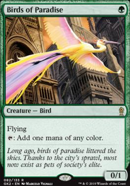 Ravnica Allegiance: Guild Kits: Birds of Paradise