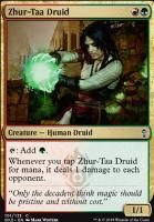 Ravnica Allegiance: Guild Kits: Zhur-Taa Druid