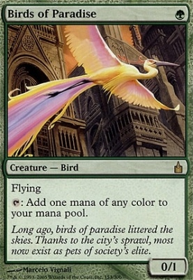 Ravnica: Birds of Paradise