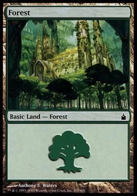 Ravnica: Forest (305 C)