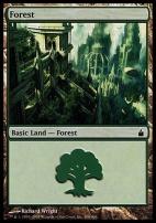 Ravnica: Forest (306 D)