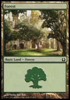 Return to Ravnica: Forest (271 B)