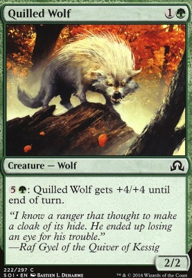 Shadows Over Innistrad Foil: Quilled Wolf