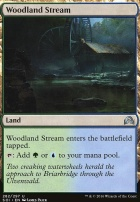 Shadows Over Innistrad: Woodland Stream