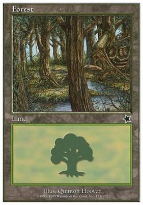 Starter 1999: Forest (171 B)