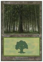 Starter 1999: Forest (172 C)