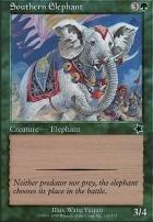 Starter 1999: Southern Elephant