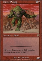 Starter 1999: Trained Orgg