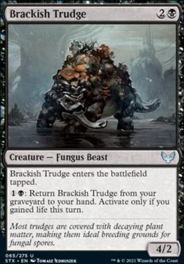 Strixhaven: School of Mages: Brackish Trudge