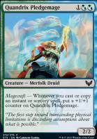 Strixhaven: School of Mages: Quandrix Pledgemage