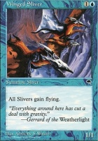 Tempest: Winged Sliver