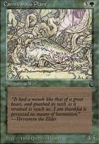 The Dark: Carnivorous Plant