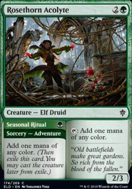 Throne of Eldraine: Rosethorn Acolyte