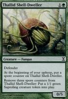 Time Spiral Foil: Thallid Shell-Dweller