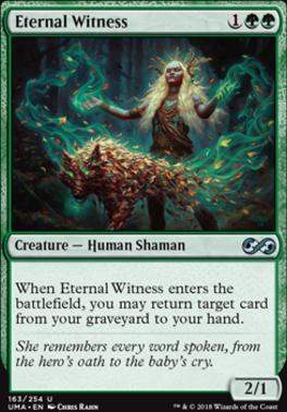 Ultimate Masters: Eternal Witness