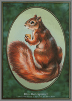 Unglued: Squirrel Token