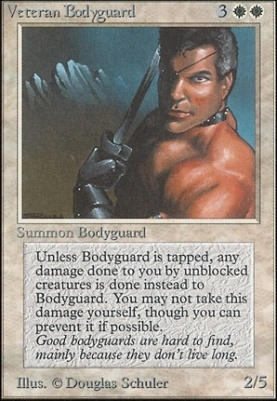 Unlimited: Veteran Bodyguard