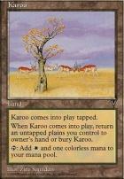 Visions: Karoo