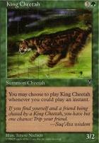 Visions: King Cheetah