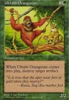 Visions: Uktabi Orangutan