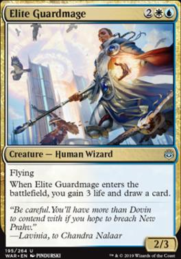 War of the Spark Foil: Elite Guardmage