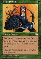 Weatherlight: Briar Shield