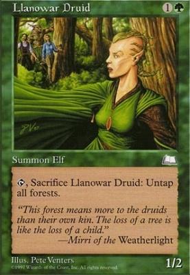 Weatherlight: Llanowar Druid