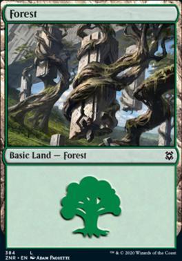 Zendikar Rising: Forest (384)