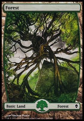 Zendikar: Forest (249 D - Full Art)