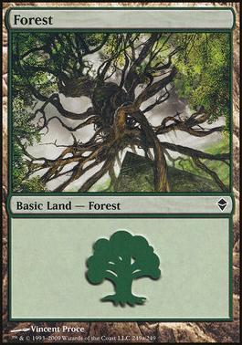 Zendikar: Forest (249 D - Non-Full Art)